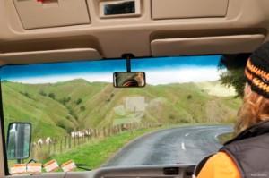 Koupě auta na Novém Zélandu